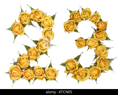 Arabic numeral 23, twenty three, from yellow flowers of rose, isolated on white background - Stock Photo