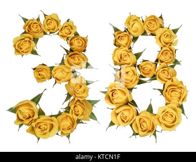 Arabic numeral 38, thirty eight, from yellow flowers of rose, isolated on white background - Stock Photo