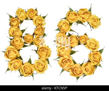 Arabic numeral 86, eighty six, from yellow flowers of rose, isolated on white background - Stock Photo
