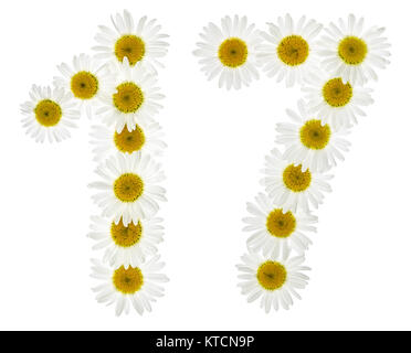Arabic numeral 17, seventeen, from white flowers of chamomile, isolated on white background - Stock Photo
