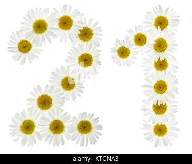Arabic numeral 21, twenty one, from white flowers of chamomile, isolated on white background - Stock Photo