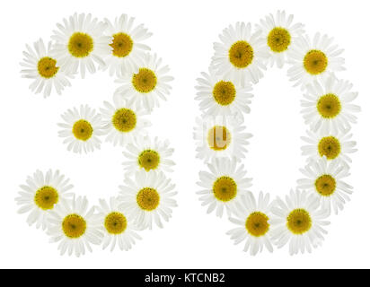 Arabic numeral 30, thirty, from white flowers of chamomile, isolated on white background - Stock Photo
