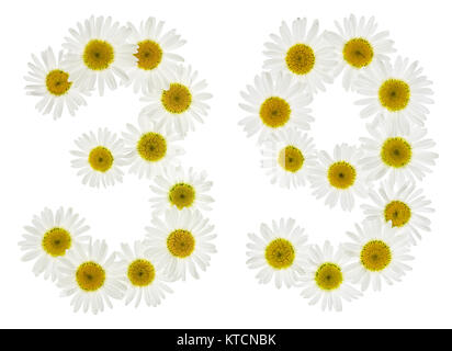 Arabic numeral 39, thirty nine, from white flowers of chamomile, isolated on white background - Stock Photo