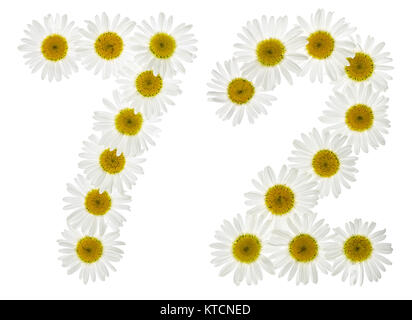 Arabic numeral 72, seventy two, from white flowers of chamomile, isolated on white background - Stock Photo