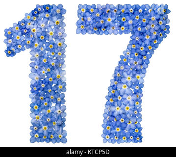 Arabic numeral 17, seventeen, from blue forget-me-not flowers, isolated on white background - Stock Photo