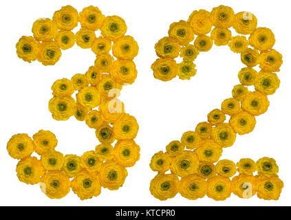 Arabic numeral 32, thirty two, from yellow flowers of buttercup, isolated on white background - Stock Photo