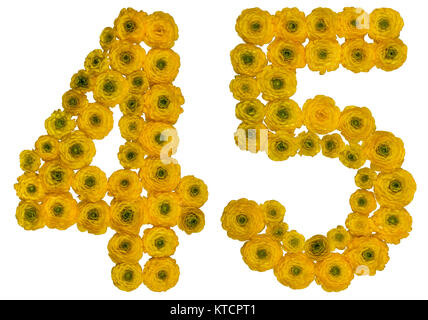 Arabic numeral 45, forty five, from yellow flowers of buttercup, isolated on white background - Stock Photo