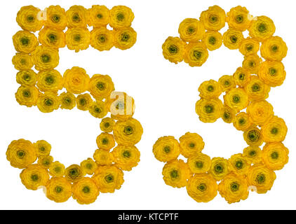 Arabic numeral 53, fifty three, from yellow flowers of buttercup, isolated on white background - Stock Photo