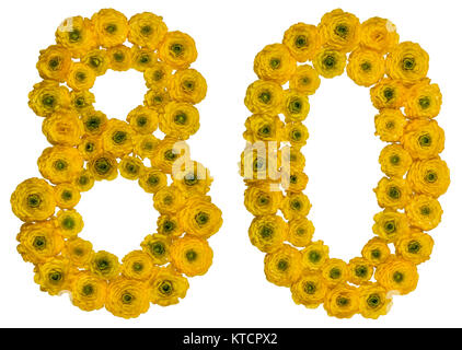 Arabic numeral 80, eighty, from yellow flowers of buttercup, isolated on white background - Stock Photo