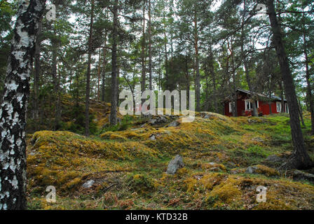 Red houses in the forest on Grinda island near Stockholm - Stock Photo