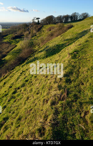 Evening Sun on Western Ramparts of Cadbury Castle Hill Fort, South Somerset - Stock Photo