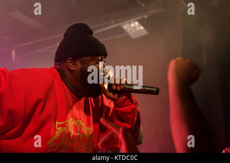 The American hip hop and rap duo Run The Jewels performs a live concert at VEGA in Copenhagen. The duo consists - Stock Photo