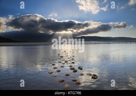 stepping stones of shells in the sand on a beach in Kerry with the rays from the sun beaming down on the sea. - Stock Photo