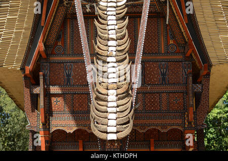 Tongkonan house with buffalo horn stacked as decoration in Tana Toraja in South Sulawesi - Indonesia. The more horn - Stock Photo