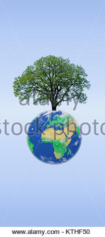 World tree on the planet earth. The interconnection of planet earth and the tree. Tree shading the world - Stock Photo