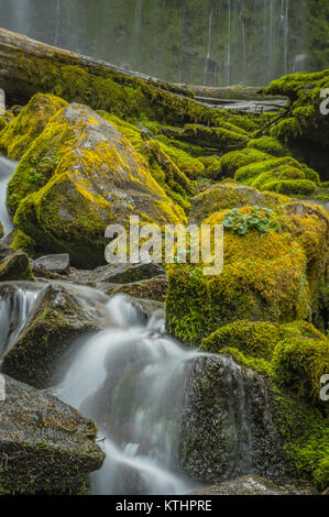 Water Rushing Around Moss Covered Boulders at Base of Prozxy Falls - Stock Photo