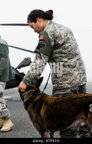Senior Airman Angela Jones, an Air Force military working dog handler, leads her dog Chester towards an Army UH - Stock Photo