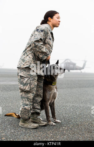 Senior Airman Angela Jones, an Air Force military working dog handler, waits with her dog Chester by an Army UH - Stock Photo