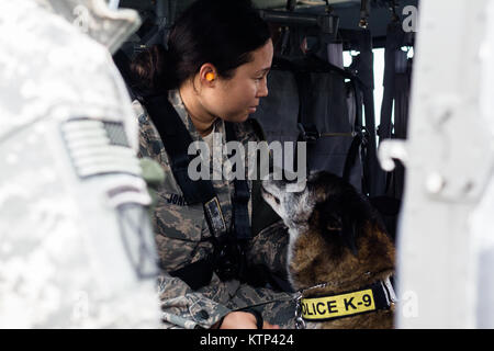 Senior Airman Angela Jones, an Air Force military working dog handler, comforts  her dog Chester inside an Army - Stock Photo