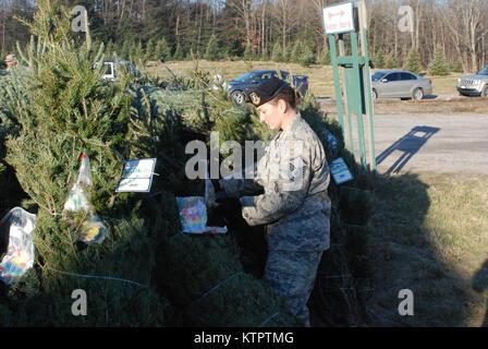 New York Air National Guard Master Sgt. Kara Tatlock helps place donated ornaments and holiday greetings into Christmas - Stock Photo