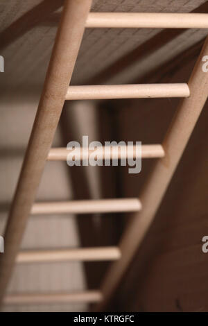 Closeup of wooden ladder inside cardboard box. Leading to out concept - Stock Photo