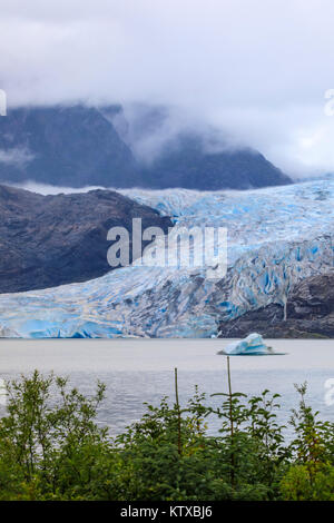 Mendenhall Glacier and Lake, with iceberg, bright blue ice, forest and mist, from Visitor Centre, Juneau, Alaska, - Stock Photo