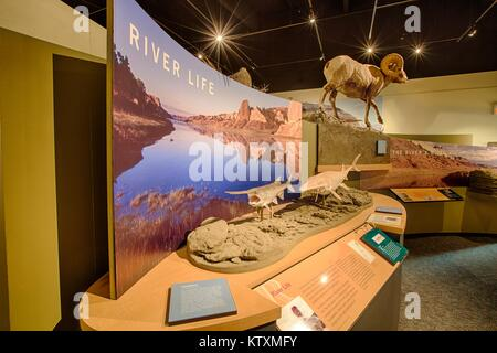 Exhibits at the Upper Missouri River Breaks National Monument Interpretive Center September 25, 2012 in Fort Benton, - Stock Photo