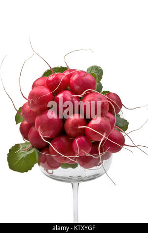 Bunch of Radish in tall glass on white background - Stock Photo