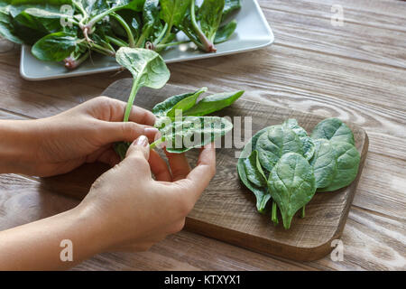 healthy eating, dieting, vegetarian food and people concept - close up of woman hands holding spinach at home. - Stock Photo
