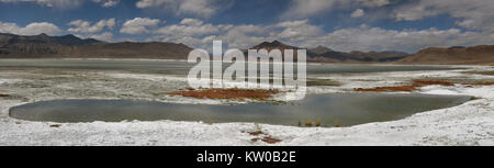 Salt mountain lake Tso Kar: among the white deposits of rock salt blue waters, islets with red vegetation, in the - Stock Photo