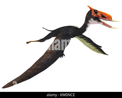 Dsungaripterus Flying Reptile - This carnivorous pterosaur lived in China in the Cretaceous Period and preyed on - Stock Photo