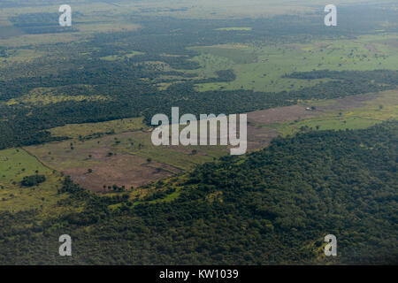 ETHIOPIA, Gambela, the government give large land for cheap lease to domestic and foreign investors, after deforestation - Stock Photo