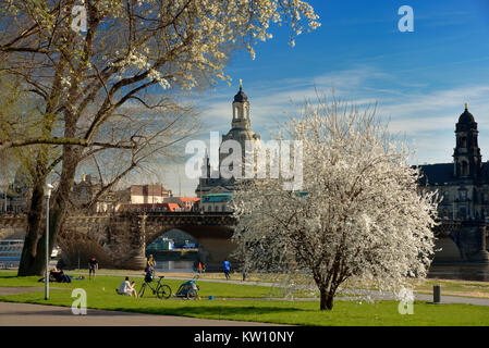 Dresden, Church of Our Lady in the view of the new town-dweller king's shore , Frauenkirche in der Ansicht vom neustädter - Stock Photo