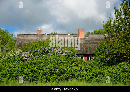 Wismar, fishing house in the monument place Lifting, Fischerhaus im Denkmalsort Hoben - Stock Photo