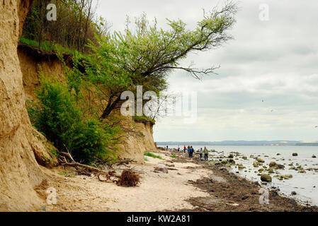 Baltic island Poel, Steilk?ste near village Timmen beach, Ostseeinsel Poel, Steilküste bei Timmendorf Strand - Stock Photo