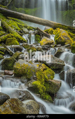 Long Exposure of the Mossy Rocks at Proxy Falls in Oregon wilderness - Stock Photo
