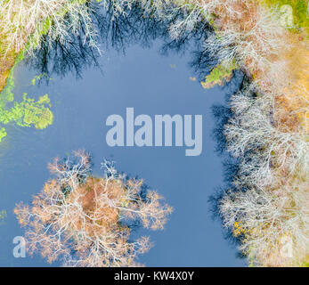 aerial view of a small pond - Stock Photo