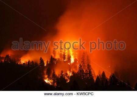 Front line of the Fork Complex fires. - Stock Photo