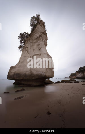Te Hoho Rock sea stack towers over a moody and atmospheric Cathedral Cove, near Hahei on the Coromandel Peninsula, - Stock Photo