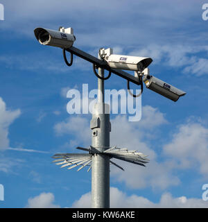 Closed Circuit Video Surveillance camera on pole  with anti-climb protection in the UK - Stock Photo