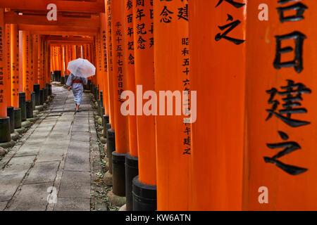 Japan, Honshu island, Kansai region, Kyoto, Arashiyama, Fushimi Inari-taisha Temple, Shinto sanctuary, torii lined - Stock Photo