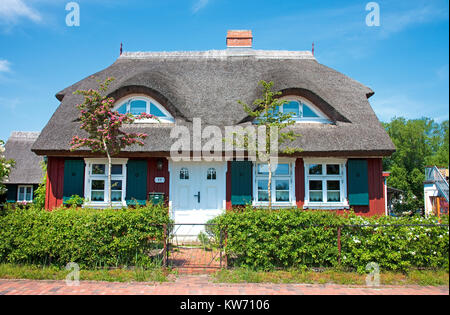 Thatched-roof house at Wieck at Darss, Fischland, Mecklenburg-Western Pomerania, Baltic sea, Germany, Europe - Stock Photo