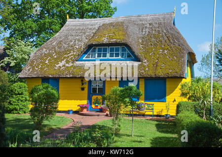 Colourful thatched-roof house at the village Born at Darss, Fischland, Mecklenburg-Western Pomerania, Baltic sea, - Stock Photo