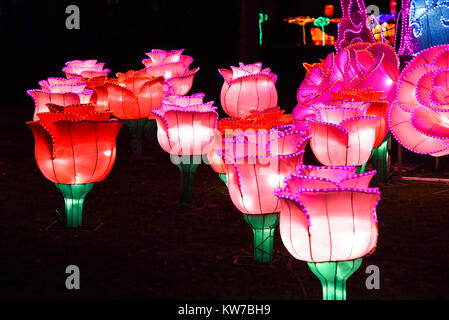 Colourful light display of pink and red roses with pretty petals at the Magical Lantern Festival, Chiswick House - Stock Photo
