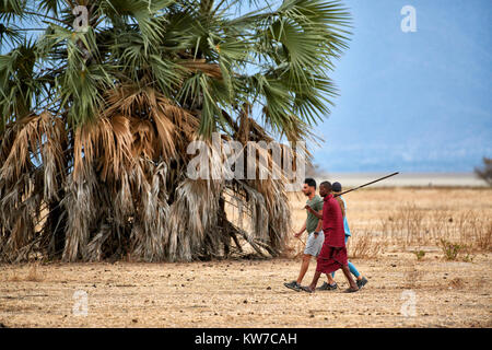 walking safari with Masai, Lake Manyara National Park, Tanzania, Africa - Stock Photo
