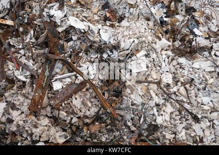 A pile of ash and rubble from a house, among the damage from the Tubbs wildfire in Santa Rosa, California, USA. - Stock Photo