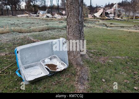 Cat food and water, left among the damage from the Tubbs wildfire in Santa Rosa, California, USA. - Stock Photo