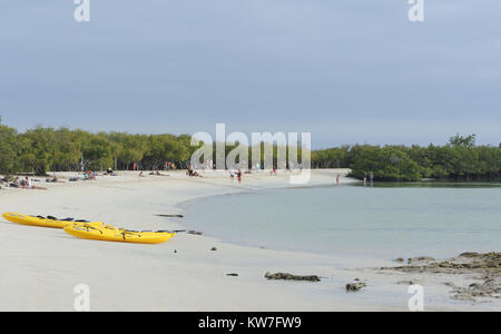 Tourists enjoy the white sands and sheltered waters of a cove behind Tortuga Bay. Tortuga Bay. Puerto Ayora, Santa - Stock Photo