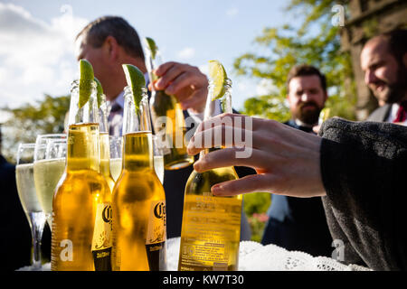 Wedding garden party in Taunton with drinks served in the garden to guests. - Stock Photo