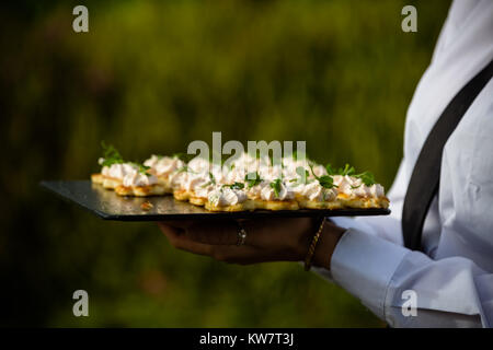 Wedding garden party reception with canapés served to guests at Taunton - Stock Photo